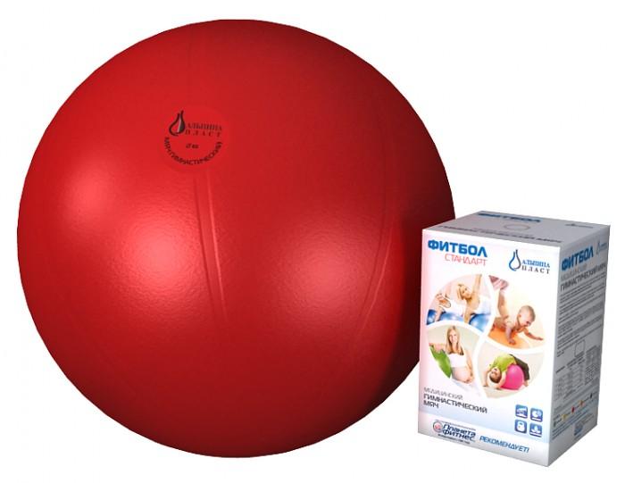 Мяч гимнастический фитбол стандарт 75 см, Альпина Пласт