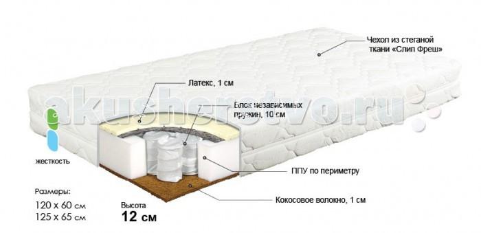 ������ Bombus ��������� 120�60�12