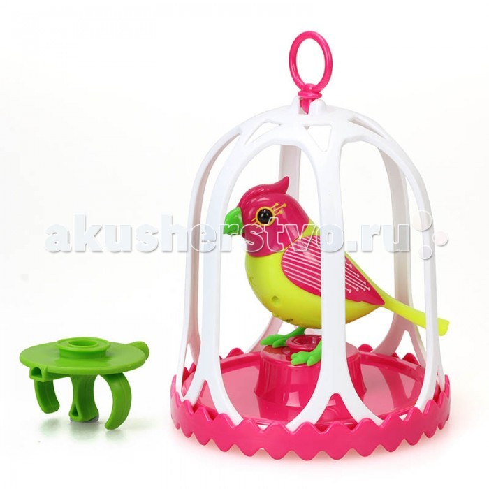 Интерактивная игрушка Digibirds Птичка с большой клеткой и кольцомПтичка с большой клеткой и кольцомDigibirds Птичка с большой клеткой и кольцом   Особенность таких игрушек в том, что они реагируют на действия ребенка музыкальными звуками, щебетания или движением. Все персонажи серии DigiBirds – это высокое качество, долгий срок службы и бесценные положительные эмоции ребенка. Выполненная в реальном размере птичка издает 55 музыкальных мелодий на манер живого птичьего пения, щебета. Голова с веселым хохолком и клюв абсолютно точно двигаются в такт пению. Дополнительные возможности: вы можете скачать мобильное приложение для смартфона и планшета с сайта DigiBirds и загрузить еще 14 мелодий для вашего игрушечного питомца.   Активировать птичку можно тремя способами: Подуть на её клюв в течение 3-х секунд, чтоб птичка защебетала Передвигать ее по воздуху (это не активизирует, можно просто посвистеть, не используя свисток) Подуть в специальный свисток, расположенный в кольце, чтоб птичка запела  Кольцо поможет не только разбудить птичку. Это насест-переноска, который ребенок может разместить на пальцах, и закрепить на нем птицу-игрушку. Клетка птички оснащена кольцом для подвешивания – ваш ребенок может разместить любимую игрушку над столом, на окне, над местом для игр – там, где ему захочется.  В комплект входит:  1 птичка DigiBirds 1 клетка из безопасного пластика с аксессуарами (подставка-насест и свисток-кольцо) 3 батарейки AG13 / LR44.  Продукция сертифицирована, экологически безопасна для ребенка, использованные красители не токсичны и гипоаллергенны.<br>