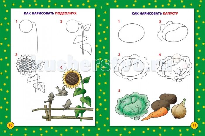 Раскраска Росмэн Школа рисования для малышей от Акушерство