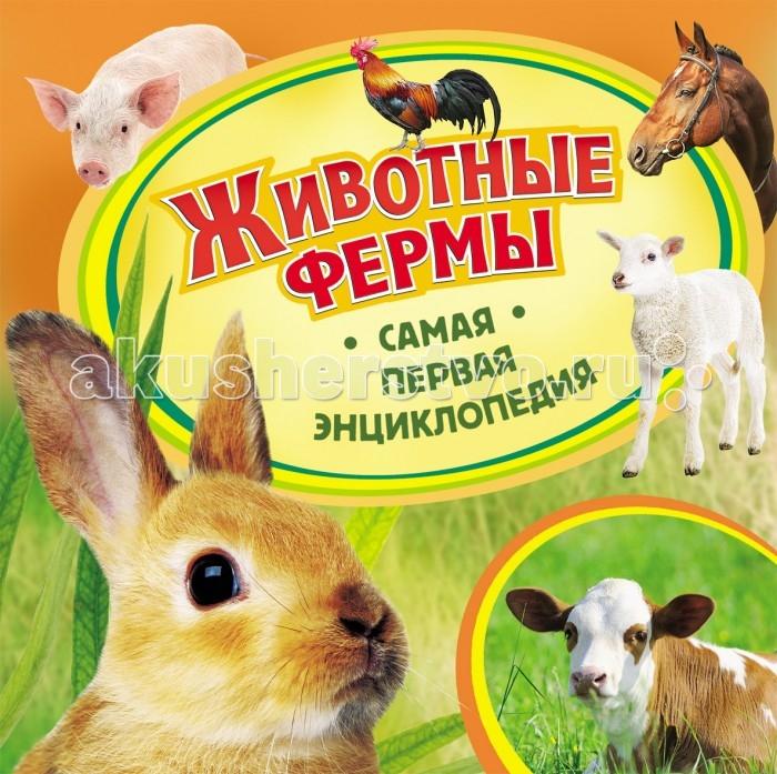 http://www.akusherstvo.ru/images/magaz/im104719.jpg