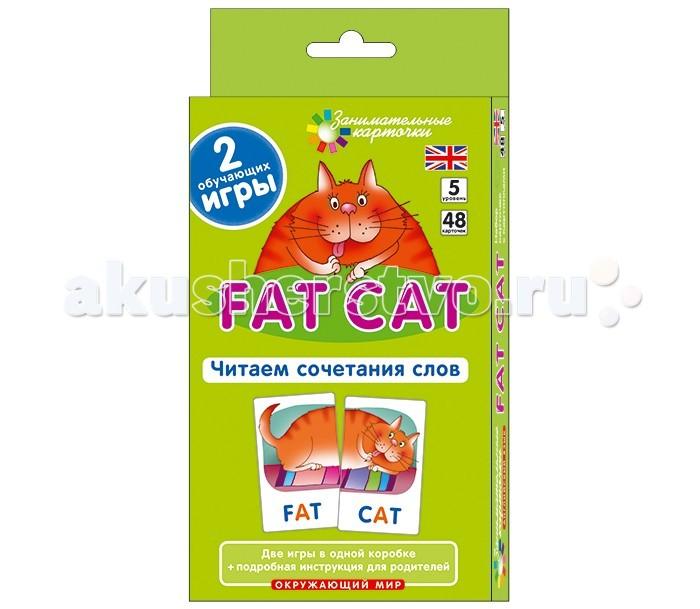 Айрис-пресс Англ5. Толстый кот (Fat Cat). Читаем сочетания слов. Level 5.  Набор карточекАнгл5. Толстый кот (Fat Cat). Читаем сочетания слов. Level 5.  Набор карточекНабор состоит из 48 карточек, которые могут использоваться с двух сторон. Игры с карточками помогут научить ребенка правильно читать по-английски, расширят лексический запас, будут способствовать графическому запоминанию образа слова. Карточки предназначены для детей младшего школьного возраста.<br>
