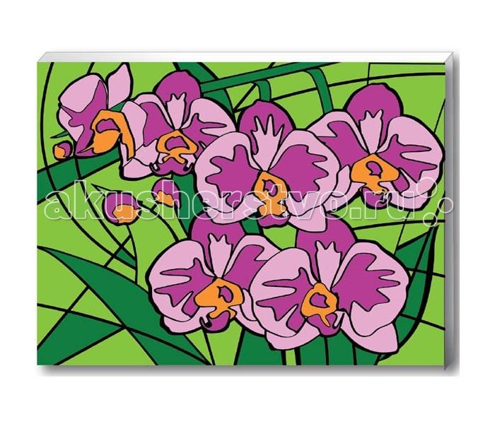 Креатто Роспись по номерам Орхидеи от Акушерство