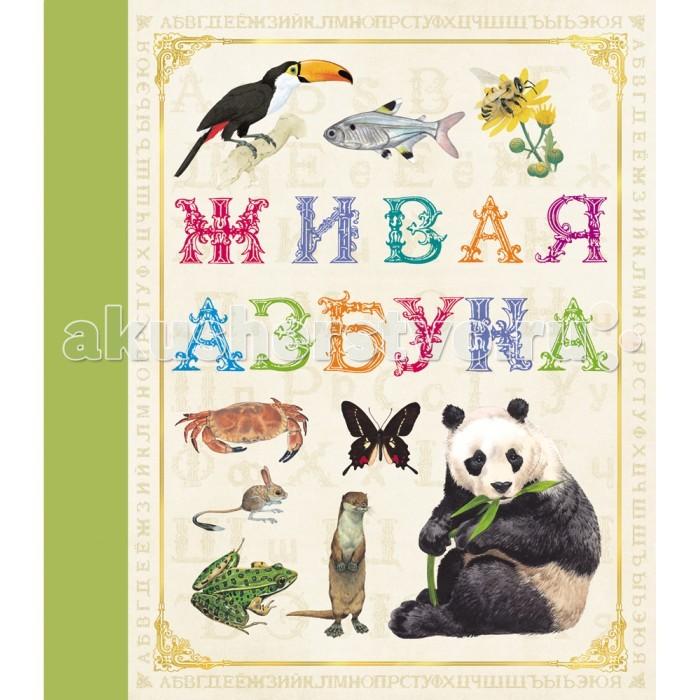 Росмэн Живая азбука