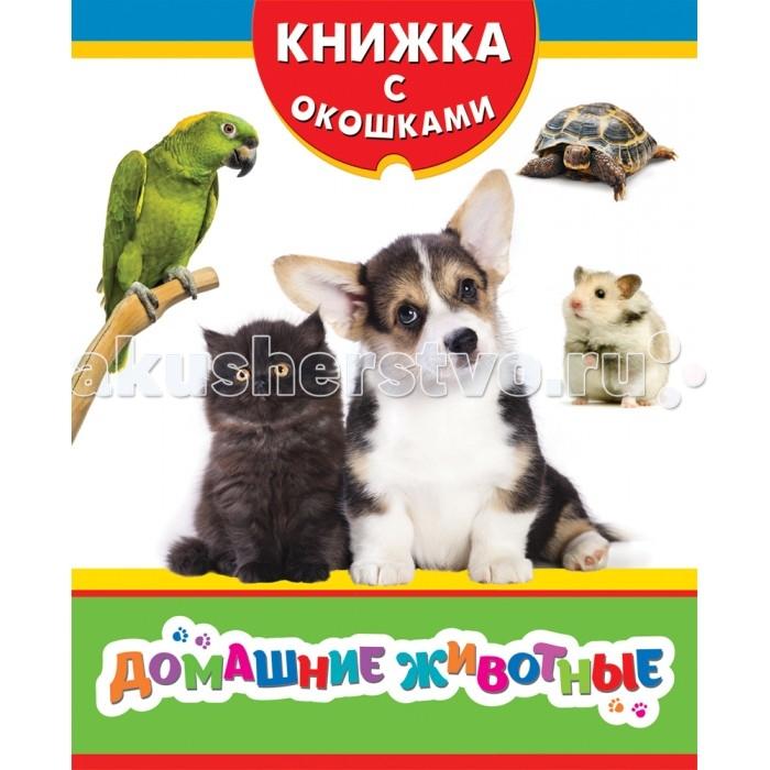 Росмэн Книжка Домашние животные
