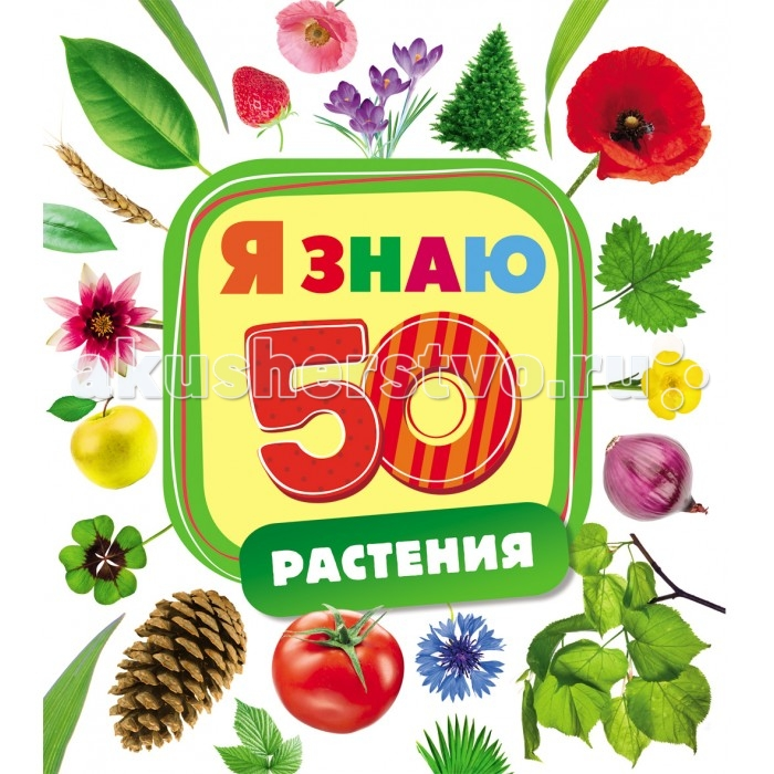 Росмэн Книжка Растения