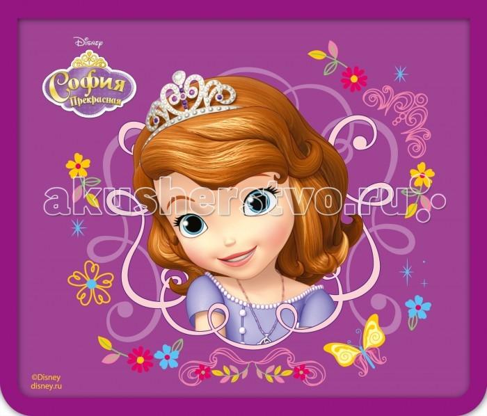 Disney Папка для тетрадей А5 София