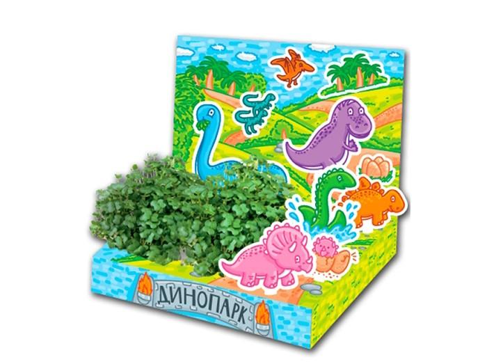 Happy Plant Детский набор для выращивания ДинопаркДетский набор для выращивания ДинопаркHappy Plant Детский развивающий набор для выращивания Динопарк.  Живая открытка Динопарк - необычный подарок для мальчика. Он сможет вырастить маленький садик и поиграть с картонными фигурками машинок. В процессе развивается мелкая моторика и усидчивость, ведь чтобы появились растения, нужно следовать инструкции!  Happy Plant - производитель органических удобрений и наборов для выращивания. В наборах нет ни капли химии, все семена проходят проверку на всхожесть. Гарантия качества и экологической чистоты от российского производителя!   В комплекте: объемная открытка 3 картонные фигурки наклейки  емкость для посадки растений,  агроткань для выращивания растений семена базилика инструкция по посадке и уходу.<br>