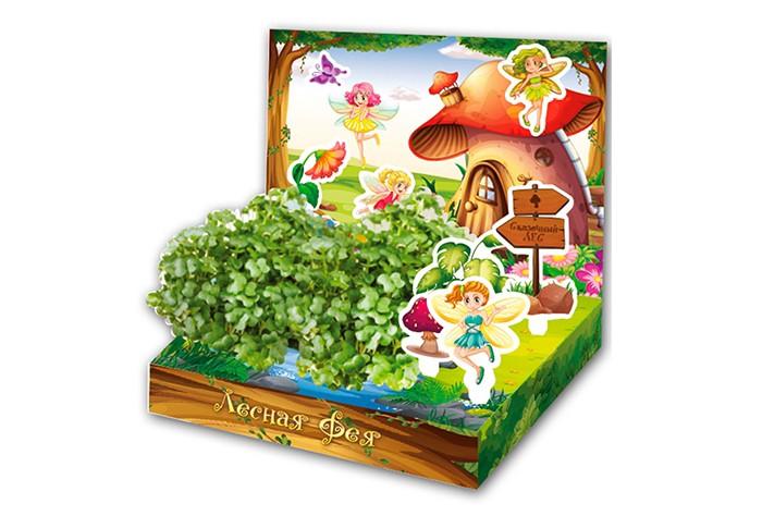 Happy Plant Детский набор для выращивания Лесная ФеяДетский набор для выращивания Лесная ФеяHappy Plant Детский развивающий набор для выращивания Лесная Фея.  Живая открытка Замок принцессы - необычный подарок для мальчика. Он сможет вырастить маленький садик и поиграть с картонными фигурками машинок. В процессе развивается мелкая моторика и усидчивость, ведь чтобы появились растения, нужно следовать инструкции!  Happy Plant - производитель органических удобрений и наборов для выращивания. В наборах нет ни капли химии, все семена проходят проверку на всхожесть. Гарантия качества и экологической чистоты от российского производителя!   В комплекте: объемная открытка 3 картонные фигурки наклейки  емкость для посадки растений,  агроткань для выращивания растений семена базилика инструкция по посадке и уходу.<br>
