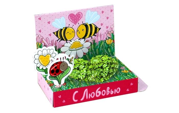 Happy Plant Подарочный набор Живая открытка С любовью!