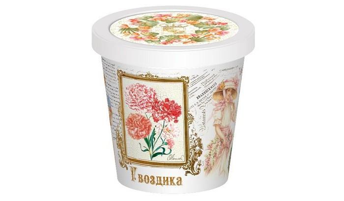 Rostokvisa Набор для выращивания Гвоздика