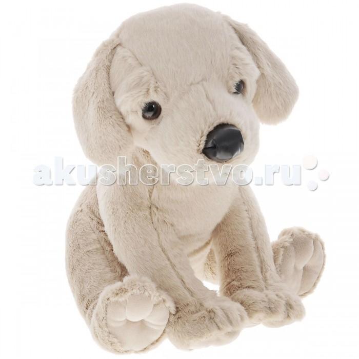Мягкая игрушка Plush Apple Грустная собака 27 смГрустная собака 27 смСобака грустная 27 см.  С игрушкой можно придумать множество интересных сюжетов для игр, а также очень приятно засыпать вечером.   Игрушка изготовлена из экологически чистых материалов и не навредит ребенку.<br>