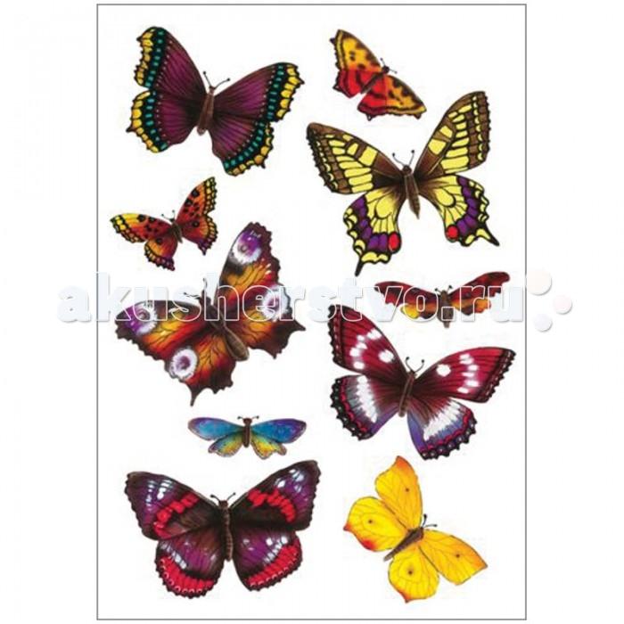 Herma Наклейки объемные 16х9 см Magic 3D Экзотические бабочкиНаклейки объемные 16х9 см Magic 3D Экзотические бабочкиHerma Наклейки объемные 16х9 см Magic 3D Экзотические бабочки   Объёмные наклейки в 3D формате. Наклейки яркие, объёмные, реалистичные. Ими можно оформить альбомы, конверты, поздравительные открытки. Изготовлены из пластика и бумаги. Клей не вызывает аллергии, даже если попадёт ребёнку в рот.  Материал – пластик Размер листа – 84 х 120 мм Количество листов – 1 Многоразовые – да<br>