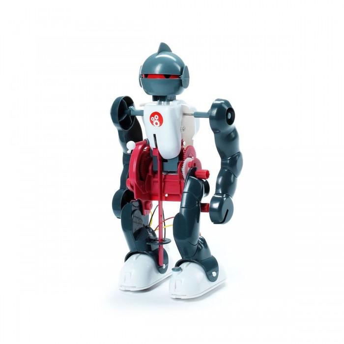 Bondibon Французские опыты Науки с Буки Юный вундеркинд Робот-акробатФранцузские опыты Науки с Буки Юный вундеркинд Робот-акробатФранцузские опыты Науки с Буки Юный вундеркинд Робот-акробат.  Всего лишь один мотор, и столько впечатляющих движений! Поиграйте в невероятную и увлекательную игру с бесконечно энергичным роботом. Только сначала нужно будет досконально разобраться в его механизме, собрать всего робота буквально по шестеренке. А затем наблюдайте за удивительными движениями робота, который выходит из любых сложных положений и встает на ноги.   Кстати, с помощью этой научно-познавательной игры можно не только развлечься, но и хорошо изучить тему роботостроения, разобраться с механизмом из множества шестеренок, ремней и цепей, а также понять работу сенсоров и узнать о крутящем моменте.   А когда в компании друзей ребенок будет хвалиться своими успехами в робототехнике, то еще он сможет поделиться своими знаниями о самых современных роботах со всего света, ведь инструкция к этой игре выглядит как научное пособие и иллюстрированный журнал в одной брошюре.<br>