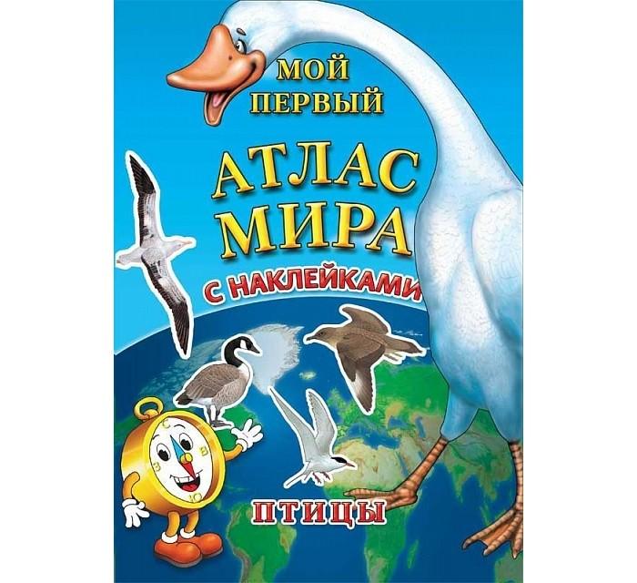 http://www.akusherstvo.ru/images/magaz/im132278.jpg