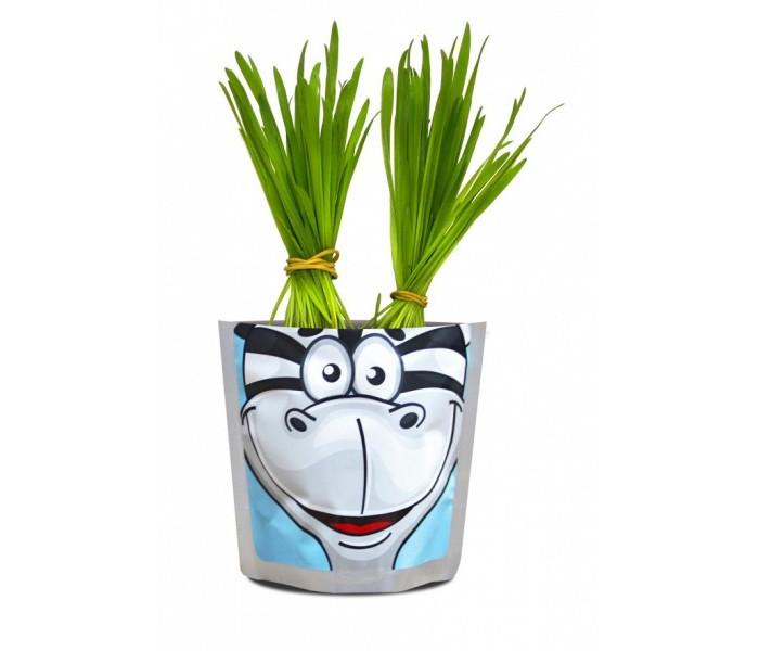 Happy Plant Набор для выращивания Зебра