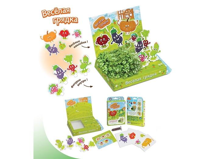 Happy Plant Набор для выращивания Весёлая грядка