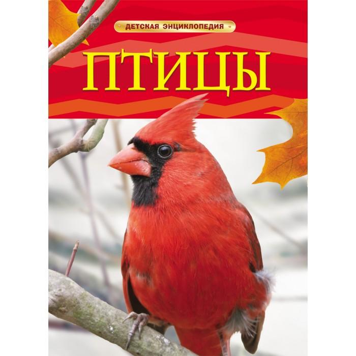 http://www.akusherstvo.ru/images/magaz/im134162.jpg