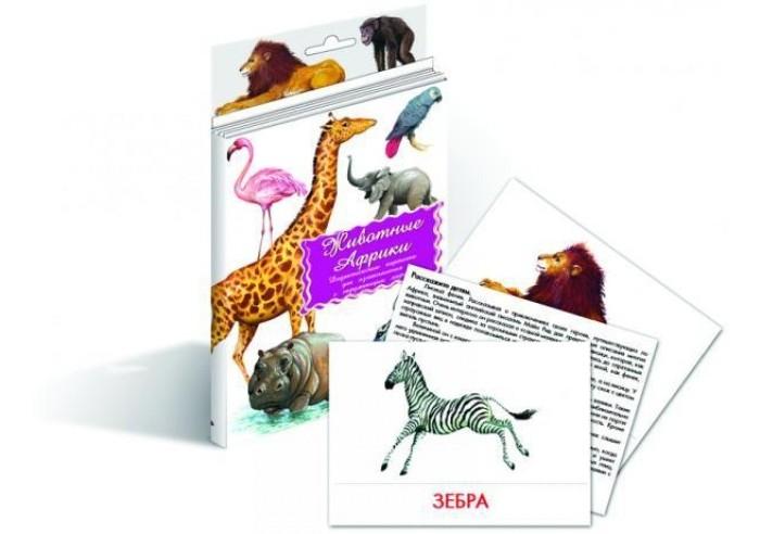 Маленький гений Дидактические карточки Животные АфрикиДидактические карточки Животные АфрикиМаленький гений Дидактические карточки Животные Африки. Тематические комплекты дидактических карточек помогут познакомить ребенка с окружающим миром, развить речевые умения, научить сравнивать, классифицировать, обобщать.  Карточки рекомендуются родителям для познавательных игр с детьми и занятий по методике Г. Домана. Могут использоваться в индивидуальной и групповой работе логопедами, психологами, воспитателями детских садов, учителями начальных классов.   В каждом комплекте 16 карточек, каждая из которых содержит интересную познавательную информацию об изображенном на ней предмете.<br>