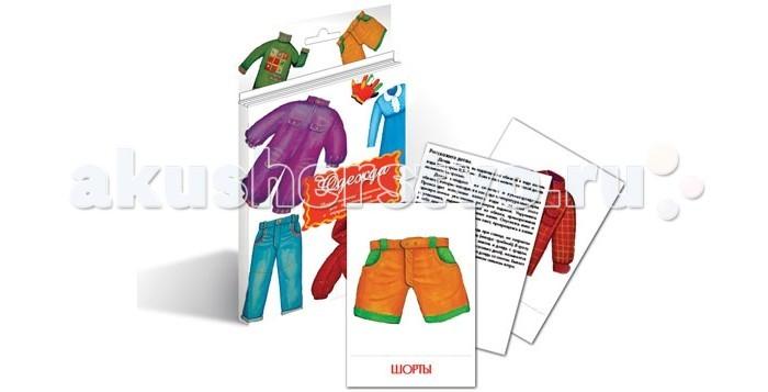 Маленький гений Дидактические карточки Одежда
