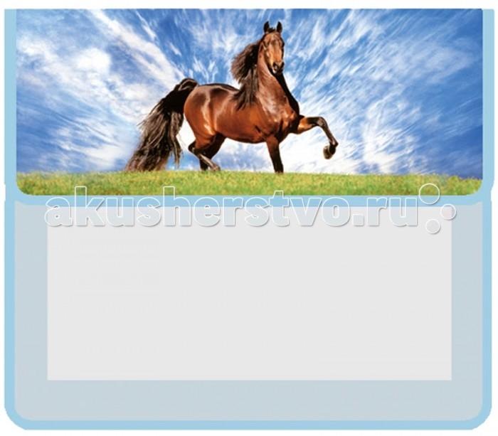 Оникс Папка для тетрадей Конь А5
