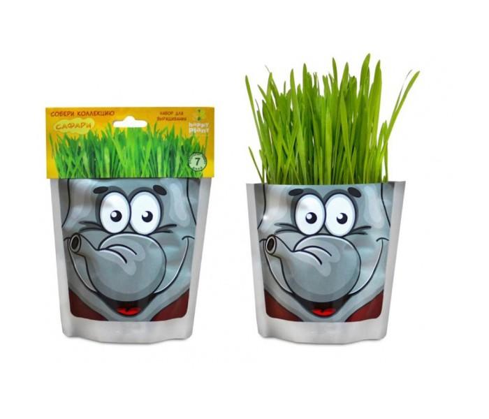 Happy Plant Набор для выращивания СлонНабор для выращивания СлонHappy Plant Набор для выращивания Слон - это интересный и полезный набор для выращивания позволит взрастить овес.   Особенности: В каждом доме будет не лишним содержать любое растение.  Понравится любителям природы и тем, кто любит ухаживать за растениями. Ребенок воочию увидит принцип взращивания растений, а взрослый, обладая достаточными навыками, сможет применить созревшее растение в пищу. Сама упаковка очень позитивная и забавная.  Этот слон настолько полон радости, что сам пакет вот-вот лопнет от позитива.  К набору прилагается инструкция, так что никаких проблем возникнуть не должно. В наборах серии - овес, который вырастает очень быстро, травка получается плотная, густая, зеленая, красивая уже через 3 дня.  Детям очень нравится делать прическу своему зеленому питомцу: травку можно подстригать ножницами, создавать разные формы, можно завязывать резинками хвостики, можно даже заплетать зеленые косички!<br>