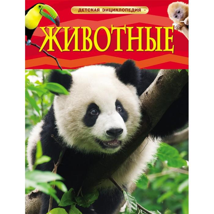 http://www.akusherstvo.ru/images/magaz/im138770.jpg