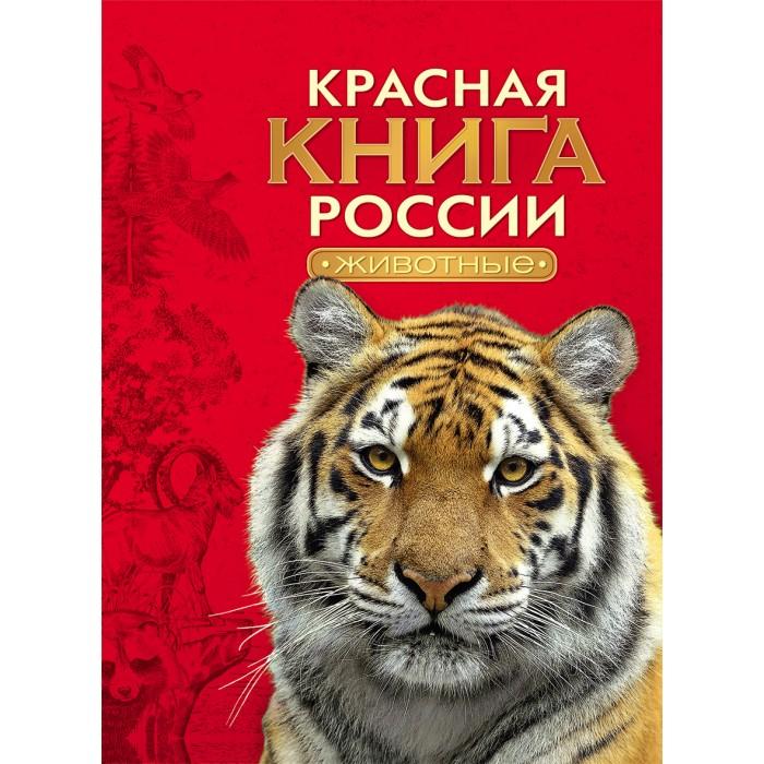http://www.akusherstvo.ru/images/magaz/im141215.jpg