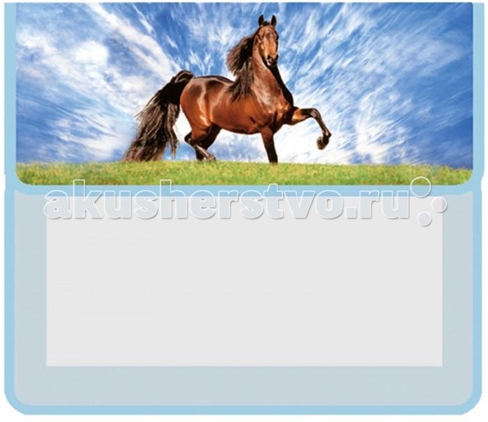 Оникс Папка для тетрадей Конь А5 2 отделения