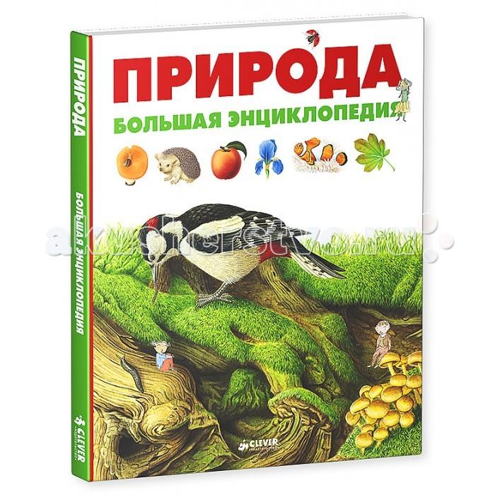 http://www.akusherstvo.ru/images/magaz/im147075.jpg