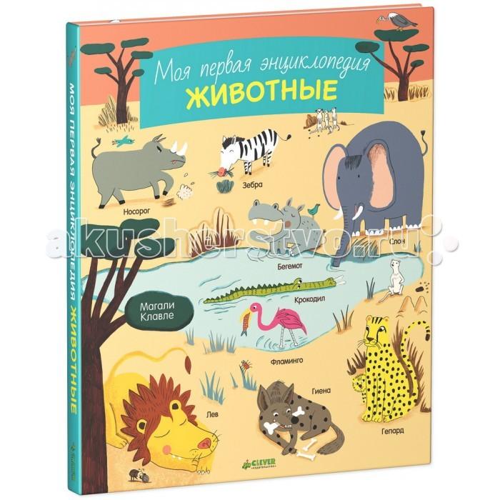 http://www.akusherstvo.ru/images/magaz/im148507.jpg