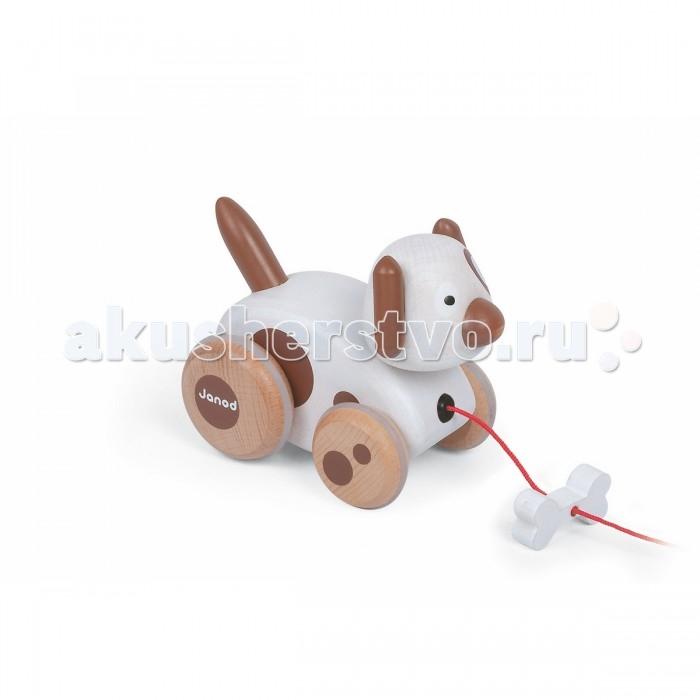 Каталка-игрушка Janod на веревочке Собачка с колокольчикомна веревочке Собачка с колокольчикомКаталка на веревочке Собачка с колокольчиком  Каталка на веревочке Собачка с колокольчиком сделана из дерева  Оригинальный дизайн, исполнение - на высшем уровне. Погремушка, которая начинает звучать в процессе движения, развлечет ребенка. Такой подарок точно не оставит равнодушным ни одного малыша!  Как только малыш делает первые шаги, ему необходимы дополнительные развлечения. Ведь у него очень быстро вспыхивает интерес ко всему, и так же быстро затихает. Но с каталкой на веревочке Собачка с колокольчиком ему определенно никогда не будет скучно!<br>