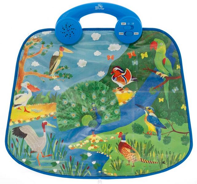 Обучающие плакаты Мир детства Обучающая панель Удивительные птицы