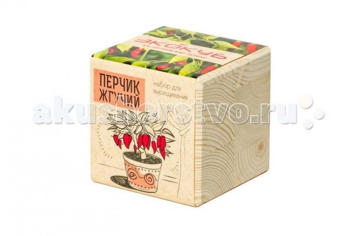 Экокуб Набор для выращивания ПерчикНабор для выращивания ПерчикЭкокуб Набор для выращивания Перчик ECB-01-12  Набор Экокуб — удивительная вещь, которая станет необычным украшением дома или оригинальным подарком.  С виду это лишь маленький деревянный куб, но все не так просто. На самом деле это экологически чистый кубический «горшок» из натуральной древесины, внутри которого спрятано настоящее деревце!  Этот необычный горшочек позволит вам самостоятельно вырастить Перчик жгучий.  Перчик жгучий (также известный как острый перец и красный перец чили) – эффектный многолетний полукустарник высотой до 1м. Это растение очень легко вырастить дома на окне или в огороде. Его яркие плоды станут оригинальным украшением интерьера. Он неприхотлив в уходе, главное высаживать его в освещенном месте.  Для перчика жгучего характерны ярко-выраженный пряный аромат и острый вкус. Он очень популярен во многих национальных кухнях, его используют как в свежем, так и в сушенном виде.  Перчик обладает многими полезными свойствами. В нем содержится большое количество эфирных и жирных масел, витамины С, В1, В2, Р. Плоды перчика улучшают метаболизм и помогают переваривать тяжелую пищу. Кроме этого, они активизируют кровообращение, и тем самым помогают выводить из организма токсины и вредные вещества, и насыщать кровь полезными компонентами.  Перчик используют так же в составе масок для волос. Он улучшает кровоснабжение кожи головы и стимулирует рост волосяных луковиц. Посадив маленькое семечко, вы сделаете свою жизнь немного лучше  В большом городе у человека так мало возможностей пообщаться с живой природой, и очень редко получается выбраться из четырех стен, ведь всегда находятся дела поважнее. Однако для поддержания внутренней гармонии и позитивной энергии поддерживать связь с природой просто необходимо.  С набором Эко-куб кусочком цветущего сада можно легко обзавестись в собственной квартире! Вместо того чтобы равнодушно поставить на подоконник магазинную фиалку или фикус, вы сможете самост