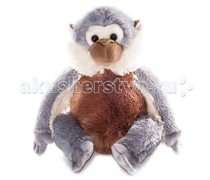 Мягкая игрушка Aurora Обезьянка 32 смОбезьянка 32 смОбезьянка 32 см  Плюшевая обезьянка с очень мягкой шерсткой - отличный выбор для девушки или ребенка! Шерсть обезьянки серого и белого цветов, а живот и ушки окрашены в коричневый.   Игрушка приятная на ощупь, сшита из экологически чистых материалов.  Длина игрушки: 32 см<br>