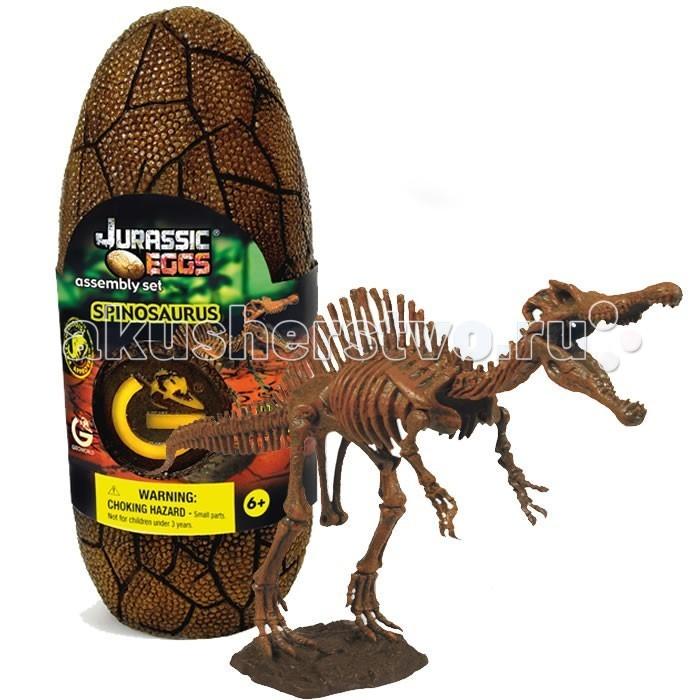 Конструктор Geoworld Сборная модель динозавра в яйце Jurassic eggs - Спинозавр 14 деталейСборная модель динозавра в яйце Jurassic eggs - Спинозавр 14 деталейСпинозавр — интересный древний ящер, который обладал большим и впечатляющим спинным гребнем. Собрать его скелет своими руками из набора Jurassic Eggs смогут все начинающие палеонтологи. Сборка совершенно не утомительна, а результат достоин восхищения. Копия этого динозавра по своему качеству приравнивается к музейному экспонату. Достоверность каждой выпускаемой копии контролирует лично владелец компании Geoworld — доктор палеонтологии. Все детали для сборки спрятаны внутрь яйца, которое имитирует яйцо древнего ящера. Модель на подставке, после сборки она сможет стать необычным сувениром.  Основные характеристики:  Размер коробки: 7.5 х 19.5 х 7 см Длина собранной модели: 32 см Количество деталей: 14 шт.<br>