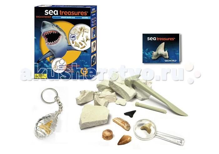 Geoworld Набор археолога Ископаемые сокровища - Акулий зуб