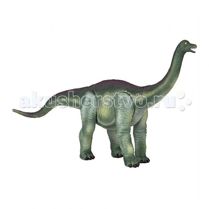Geoworld Фигурка Jurassic Action Динозавр - АпатозаврФигурка Jurassic Action Динозавр - АпатозаврФигурка апатозавра из серии Jurassic Action имеет подвижные ноги, а в комплект к ней входит карточка, описывающая уникальные особенности этого динозавра. Всего серия состоит из 24 разных динозавров — соберите их всех и узнайте подробности про каждого! В наборе найдется и диорама, показывающая доисторический ландшафт, по которому мог бы гулять апатозавр, а также буклет с интересными фактами про него. Наборы Geoworld разрабатываются под тщательным руководством ученых-палеонтологов, поэтому, покупая игрушку этого бренда, вы можете быть уверены, что приобретаете качественную вещь с самой точной сопровождающей ее научной информацией.  Комплект:   Подвижная фигурка динозавра;  Лифлет с научной информацией; Диорама; Карточка.   Основные характеристики:  Размер упаковки: 33 x 23 x 11 см<br>