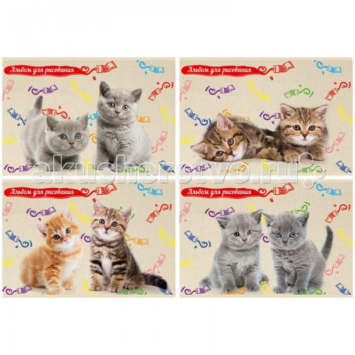 БиДжи Альбом для рисования Пушистые котята на скрепке А4 (8 листов)