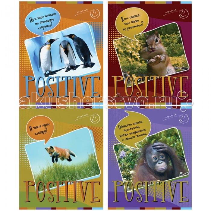 БиДжи Тетрадь Забавные животные А5 (48 листов) от Акушерство