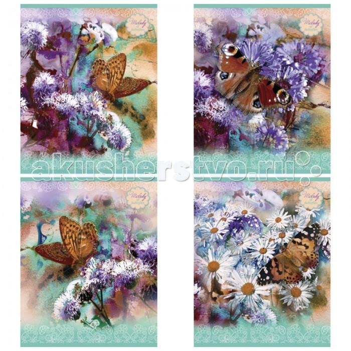 БиДжи Тетрадь Красота С блестками А5 (48 листов) от Акушерство