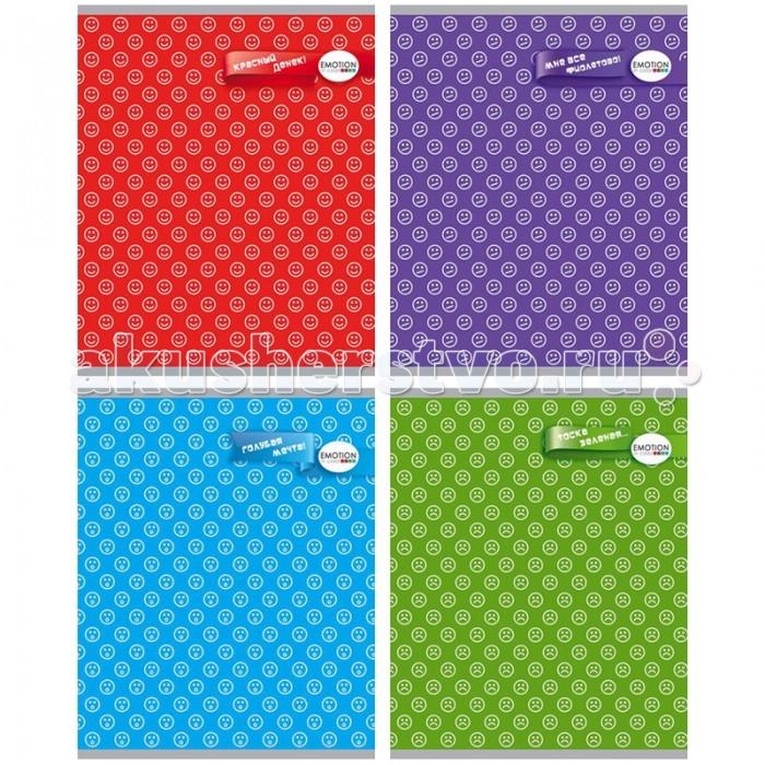 БиДжи Тетрадь Цветные эмоции Ламинация А5 (48 листов) от Акушерство