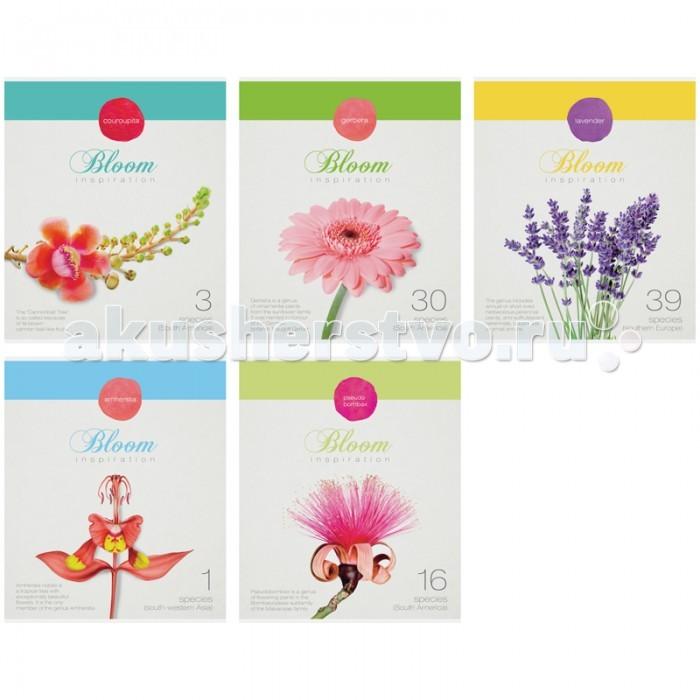 Спейс Тетрадь А5 клетка Цветы Bloom inspiration (40 листов)