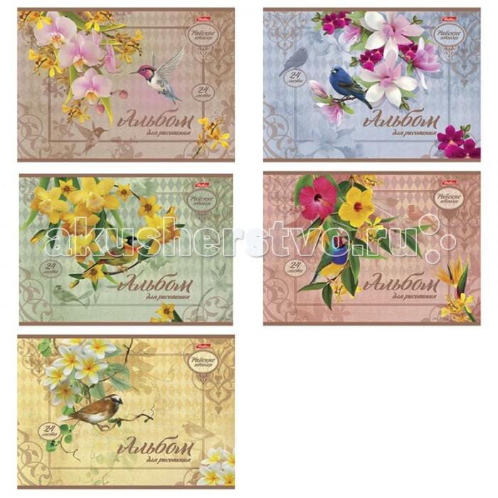 Hatber Альбом для рисования 24 листов Райские птички