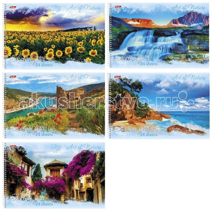 Hatber Альбом для рисования 24 листов Дыхание природы
