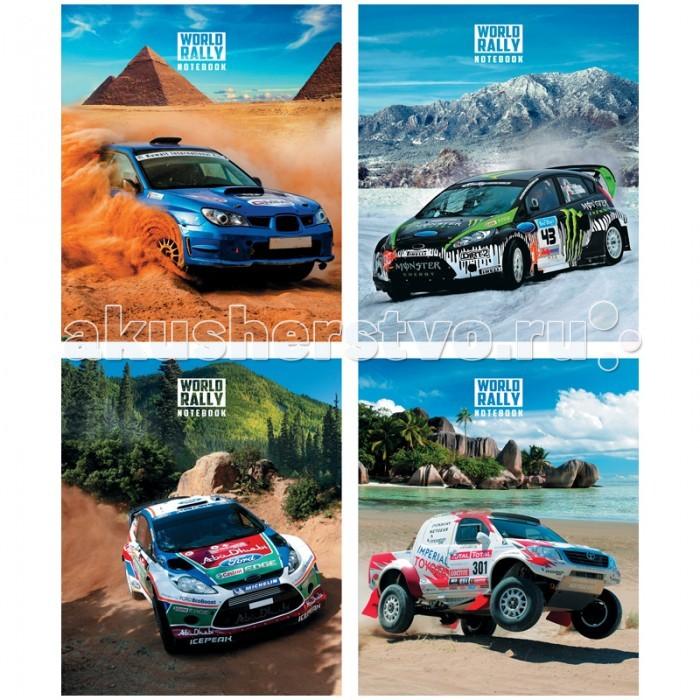 Спейс Тетрадь А5 клетка Авто World rally (48 листов)