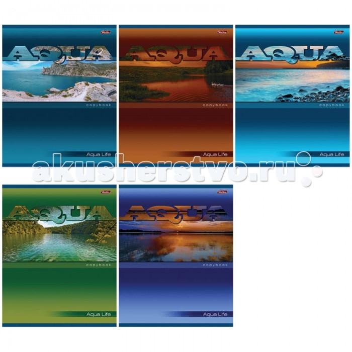 Hatber Тетрадь Aqua А5 (48 листов)