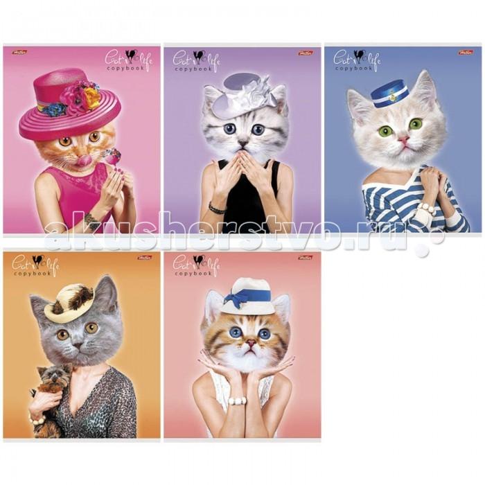 Hatber Тетрадь Cat's life А5 (48 листов)