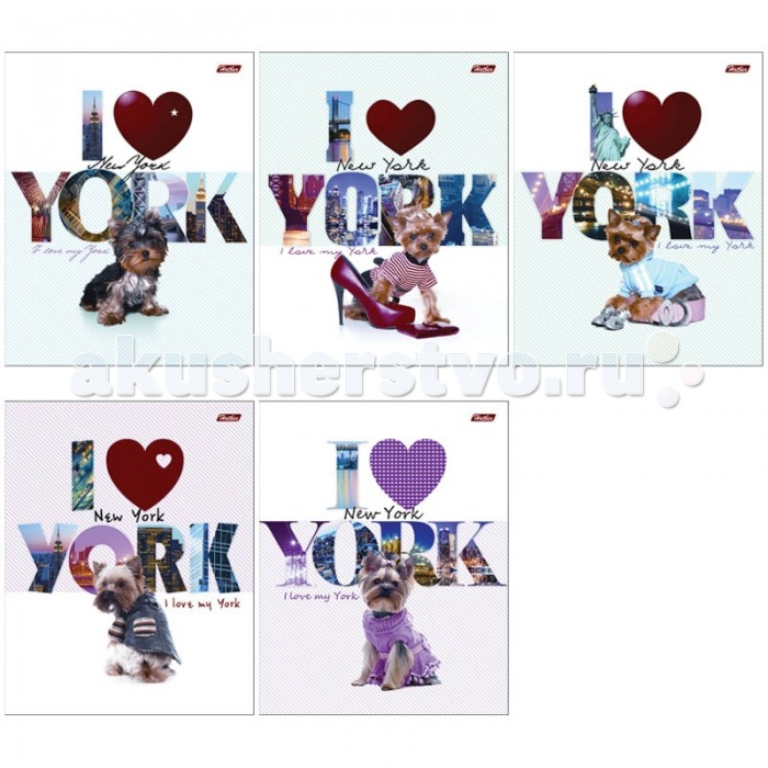 Hatber Тетрадь I love York А5 (48 листов)