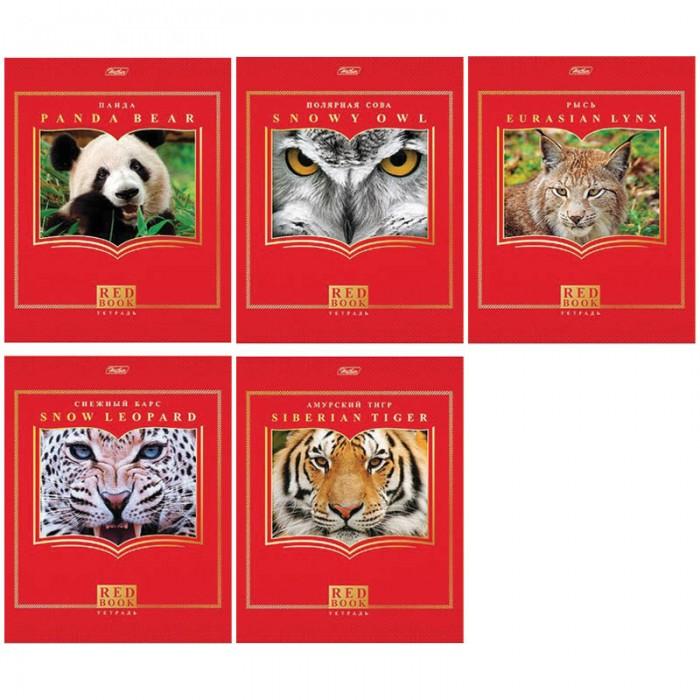 Hatber Тетрадь Красная книга А5 (48 листов)Тетрадь Красная книга А5 (48 листов)Hatber Тетрадь Красная книга А5 (48 листов, клетка) станет отличным дополнением к комплекту школьных принадлежностей для вашего ребенка. Модель отличается оригинальным дизайном и высоким качеством используемых материалов.  Особенности: Обложка тетради выполнена из картона, а внутренний блок из плотной бумаги Разлиновка четкая и яркая, имеются тетрадные поля Тип крепления скрепка.  Тетради в ассортименте.<br>